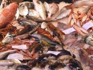 Il pesce di scoglio e il crostino: una ricetta per il ciuppin