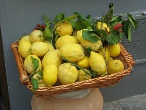 Limone, limoncino, limoncello. Un agrume dalle mille risorse