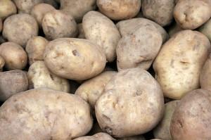 Dagli Inca agli gnocchi: la Sagra (e la saga) della patata