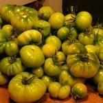 Pomodori verdi: anche loro possono essere buoni in conserva